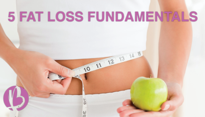 fat loss fundamentals, lose fat, how to lose fat