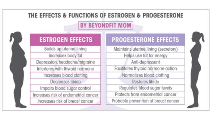 Fix Your Fat Fighting Hormones Day 1: Estrogen
