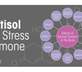 Fix Your Fat Fighting Hormones Day 6: Cortisol