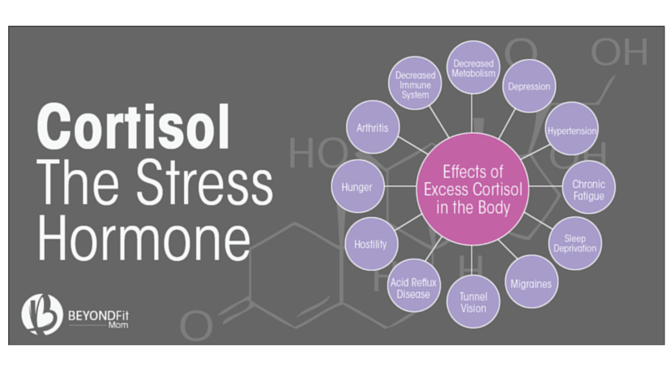 cortisol, lower stress