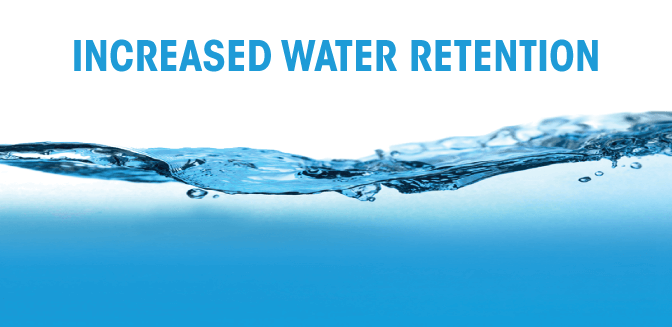 increased-water-retention