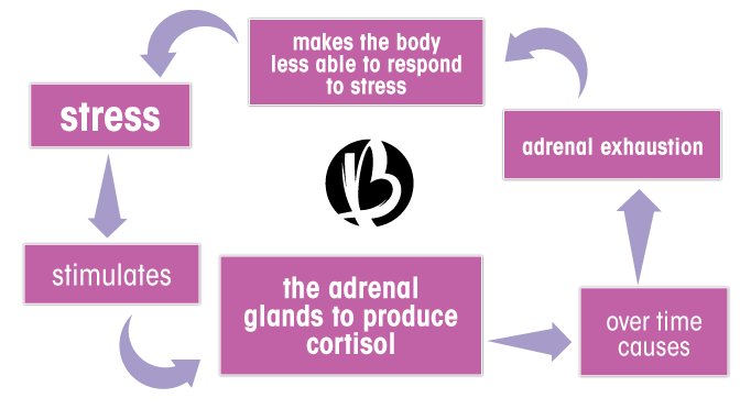 adrenal fatigue, stress, cortisol